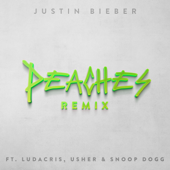 Peaches (Remix) [feat. Ludacris, Usher & Snoop Dogg]