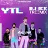 YTL Treemix feat Mickey Singh Pam Sengh Ramvir Jay Skilly Single
