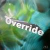 Override by 雨のパレード