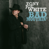 Boom Boom - Tony Joe White