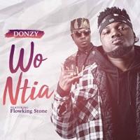 Wo Ntia (feat. Flowking Stone) - Single