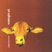 Midnight Oil - Golden Age (Album Version)