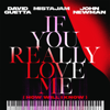 If You Really Love Me How Will I Know - David Guetta, MistaJam & John Newman mp3