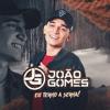 João Gomes & Vítor Fernandes - Se For Amor  arte
