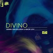Divino (Extended Mix) artwork