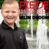 Pietje Tomassen - Mijn Droom kunstwerk