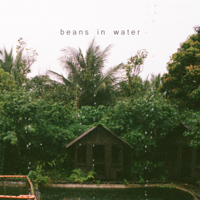 Beans in Water Mp3 Songs Download