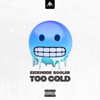 Sickmode & Rooler - TOO COLD (Extended Mix) bild