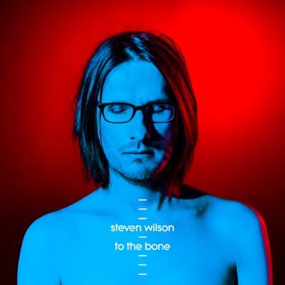 To the Bone - Steven Wilson album