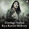 Zindagi Tujhse Kya Karen Shikvey Single