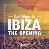 One Night in Ibiza - The Opening - Various Artists