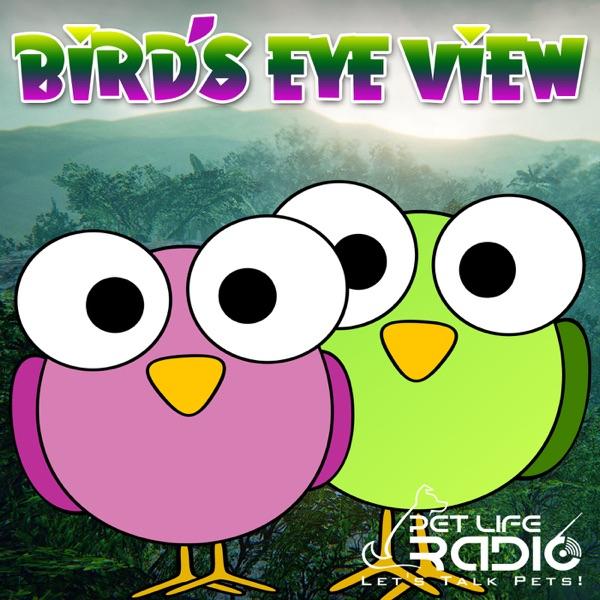 Bird's Eye View on Pet Life Radio (PetLifeRadio com) – Podcast – Podtail