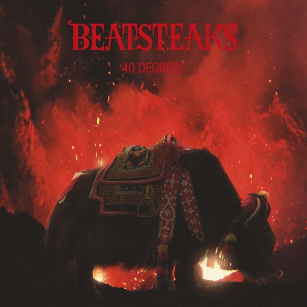 Beatsteaks - 40 Degrees - Single
