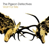 The Pigeon Detectives - Take Her Back