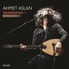 Ahmet Aslan - Şu Kanlı Zalimin Ettiği İşler artwork