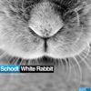 White Rabbit - Single ジャケット写真