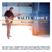 We're All In This Together (feat. Joe Bonamassa)-Walter Trout