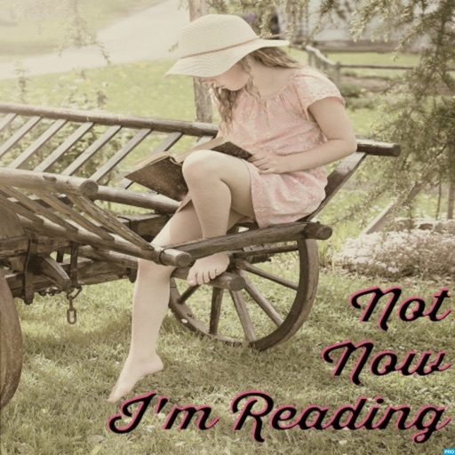 Cover image of Not Now, I'm Reading