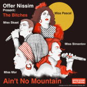 Ain't No Mountain (feat. The Bitches)