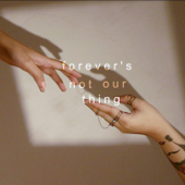 Forever's Not Our Thing
