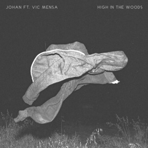 High in the Woods (Remix) [feat. Vic Mensa] - Single Mp3 Download