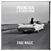 Fake Magic - Single