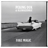 Peking Duk x AlunaGeorge - Fake Magic