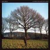Jim Ghedi - Fortingall Yew