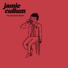 Jamie Cullum - What Do You Mean? bild