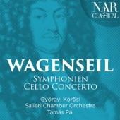Symphonie in C Major, WV 361: III. Tempo di minuetto artwork