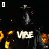 The PropheC - Vibe artwork