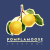 Pomplamoose - Lovefool 插圖