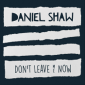 iTunesCharts net: 'Don't Leave Me Now' by Daniel Shaw