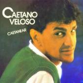 Caetano Veloso - Odara