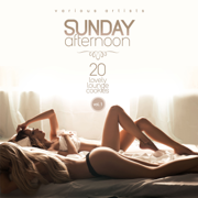 Sunday Afternoon, Vol. 1 (20 Lovely Lounge Cookies) - Various Artists - Various Artists