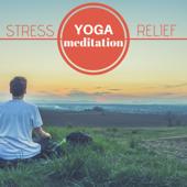 Mindfulness Medittaion Music