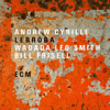 Andrew Cyrille, Ishmael Wadada Leo Smith & Bill Frisell - Lebroba  artwork