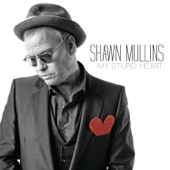 Shawn Mullins - Go And Fall