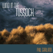 Wind in the Tussock