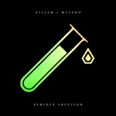 Villem & McLeod - Perfect Solution