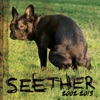 Seether 2002 2013