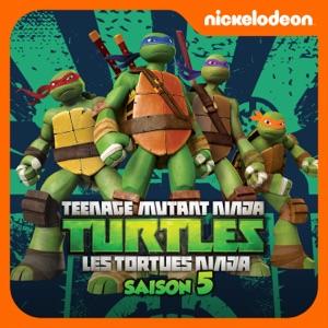 Nina liste des saisons - Le nom des tortue ninja ...
