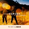 Andrés Cepeda - Te Voy a Amar (feat. Cali y El Dandee) ilustración