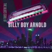 Billy Boy Arnold - Work Song