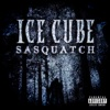 Sasquatch Single