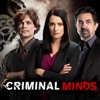 Criminal Minds, Season 14 wiki, synopsis