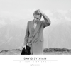 David Sylvian - I Surrender artwork