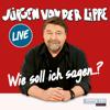 Jürgen von der Lippe - Wie soll ich sagen... artwork