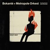 Bokanté & Metropole Orkest & Jules Buckley - Fanm