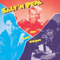 Salt-N-Pepa - Hot, Cool & Vicious artwork